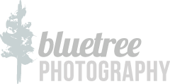 bluetree photography logo